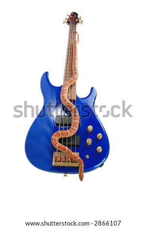 Orange snake on blue electric guitar isolated with clipping path