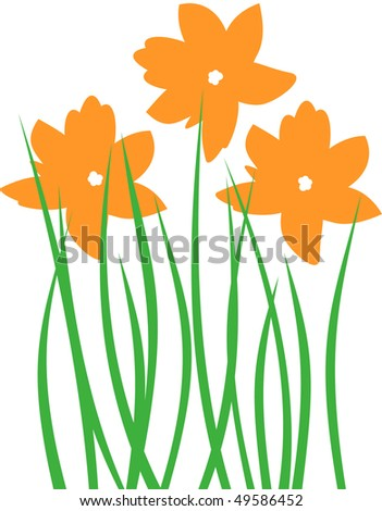 Orange Spring Flower - stock photo