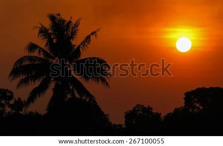 Orange sunset. - stock photo