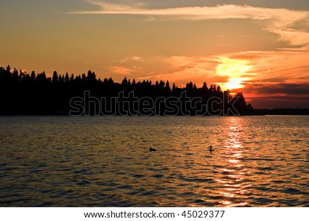 Orange sunset glow beyond a northern Canadian lake at twilight with the silhouette of trees in the foreground. - stock photo