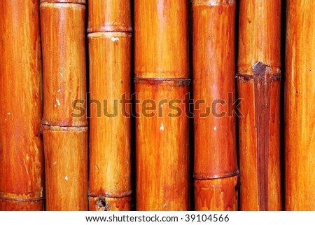 Orange texture of tropical wood. Empty to insert text or design