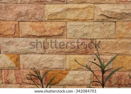 Orange wall with small tree - stock photo