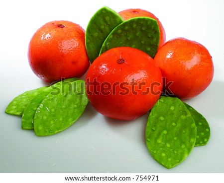 Oranges and cactus leaves - stock photo