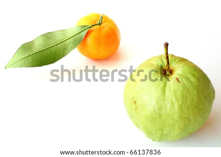 Oranges and guava isolated on white - stock photo