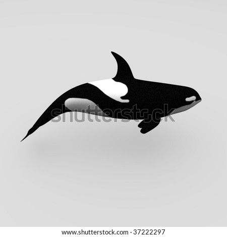 orca whale - stock photo