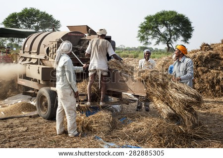 ORCHA,INDIA -  APRIL  23, 2015: Unidentified Indian people working on the field on April  23, 2015 in Orchha, Madhya Pradesh, India. India ranks second worldwide in farm output.