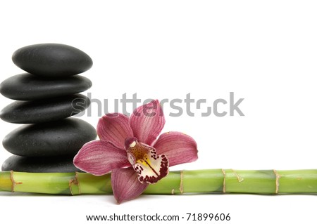 orchid and black Stones balanced stones on the bamboo grove - stock photo