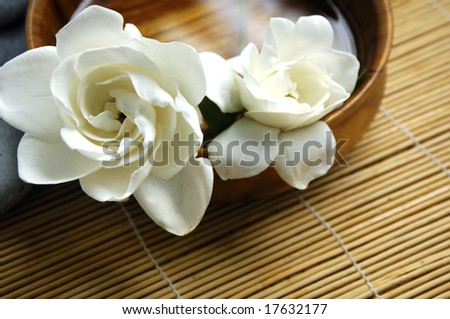 orchid and spa item - stock photo