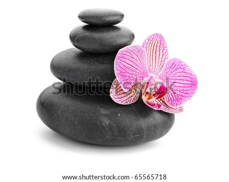 orchid and stones isolated on white