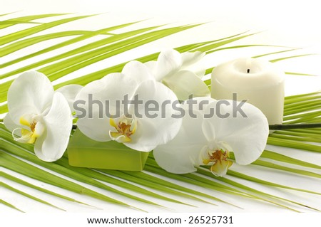 Orchid, candle, soap in a spa - stock photo