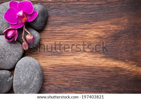 Orchid flower on wooden background with spa stones. - stock photo
