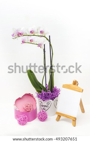 Orchid flowers in a pot of white gift box and card for text