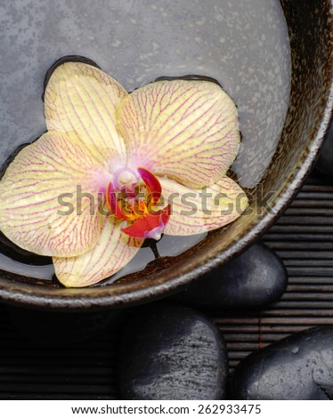 orchid in water bowl with and stones on bamboo mat  - stock photo