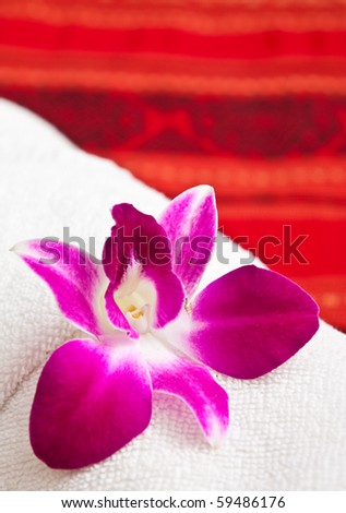 Orchid on white towel in Thai style spa - stock photo