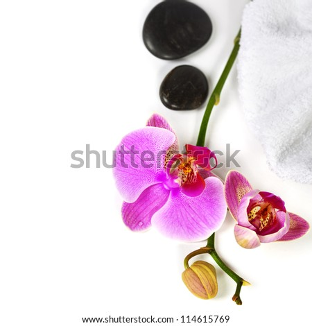Orchid Spa Composition- Spa and healthcare concept - stock photo