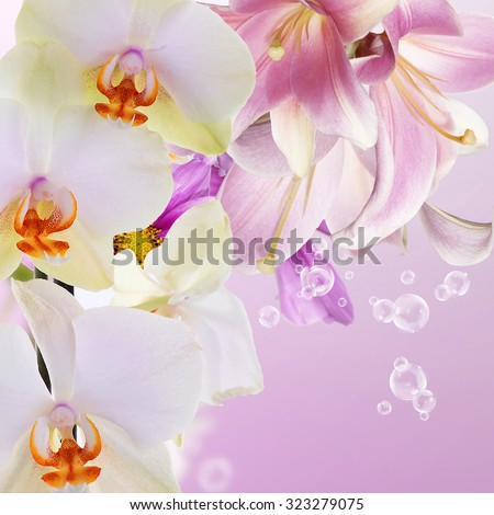 Orchid with lily.Beautiful flowers - stock photo