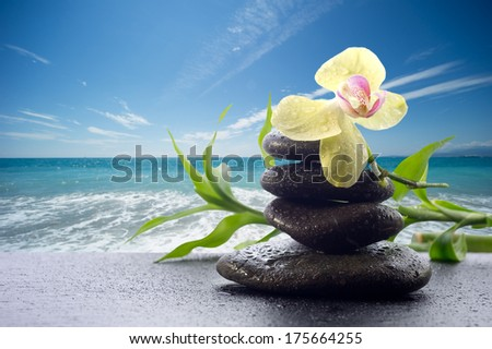 orchid with stone  against blue sky - spa concept - stock photo