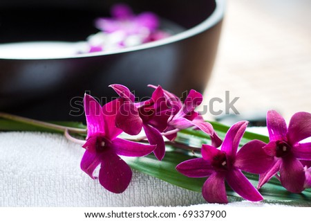 Orchids in spa setting - stock photo