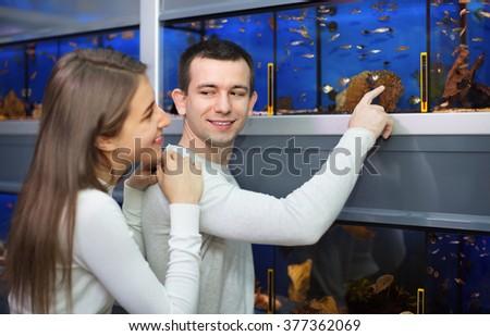 Ordinary cheerful positive customers selecting tropical fish in aquarium tank - stock photo