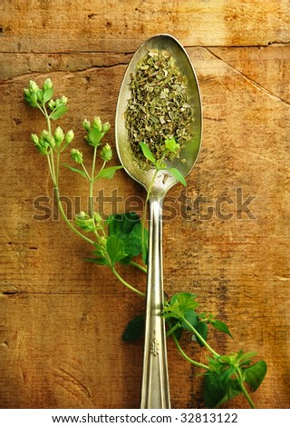Oregano sprig with dried in a silver spoon on a rustic wood table.