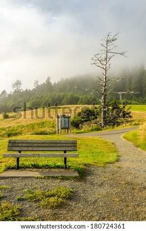 Oregon coast. Picnic bench and table.