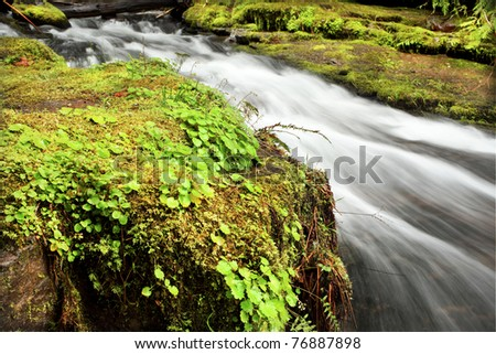 Oregon waterfall portraits - stock photo