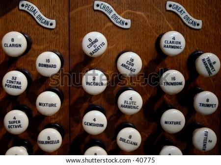T W S Portfolio On Shutterstock