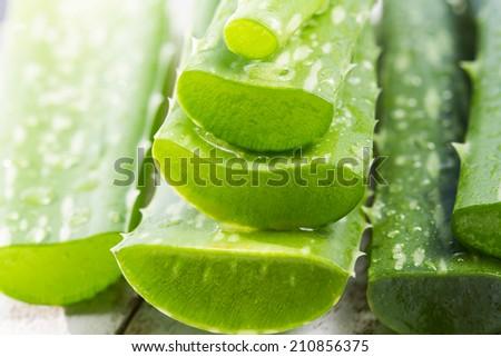 organic aloe vera gel on white wooden background - stock photo