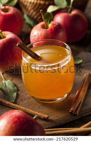 Organic Apple Cider with Cinnamon Ready to Drink - stock photo