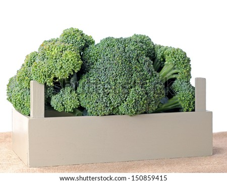 organic broccoli on table against white background - stock photo