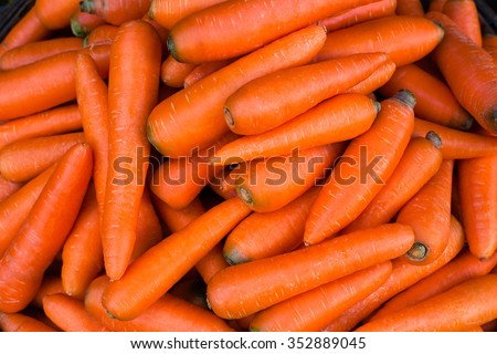 Organic carrot. Food background. - stock photo