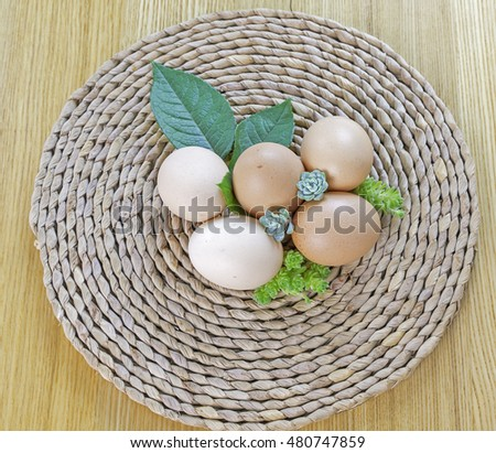 organic egg with small green plant on wooden