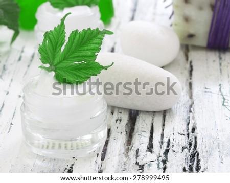 organic facial cream - stock photo