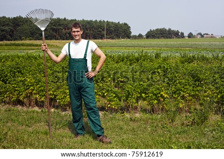 organic farmer with rake in front of a raspberry field - stock photo