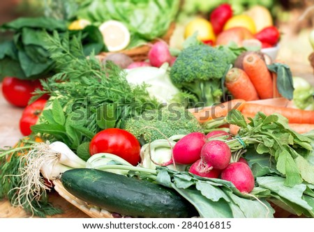 Organic food - vegetarian food - stock photo