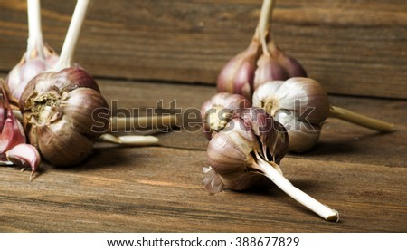 Organic garlic on a wooden table in the background .Rustic style.