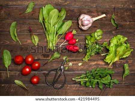 Organic greens herbs radishes cherry tomatoes garlic just from the garden on rustic wooden background. Fresh ingredients for salad. - stock photo