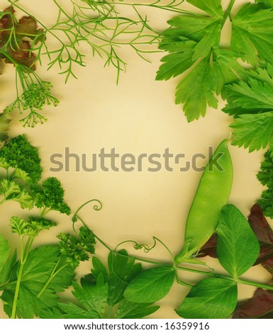 Organic herb border. Set against a brown eco friendly background.