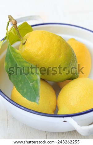 organic lemons - stock photo