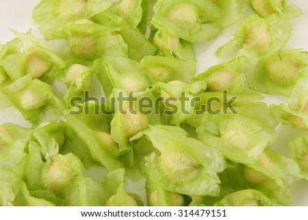 Organic moringa seeds on white background. - stock photo