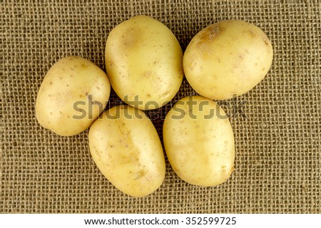 Organic raw Potato - stock photo