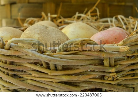 Organic Russet and red potatoes sit inside a hay filled wicker basket at a local farmers market - stock photo