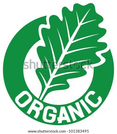 Acorn Leaf Stock Vector 321710081 - Shutterstock Organic Leaf Symbol