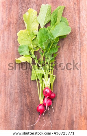 organic, small, red radishes, freshly harvested from home grown garden. isolated over a brown wood background - stock photo