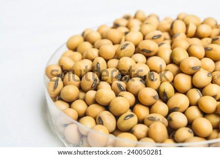 Organic Soybean Seed for Human Food - stock photo