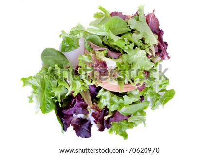Organic spring mix green leaves for salad - stock photo