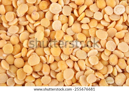 Organic ,unpolished Toor dal, famous Indian legume also called yellow Pigeon peas.Selective focus. - stock photo