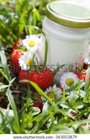 organic yogurt - stock photo
