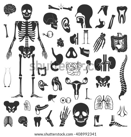 Organs set 50 black simple icons. Body, anatomy icon design for web and mobile device. - stock photo