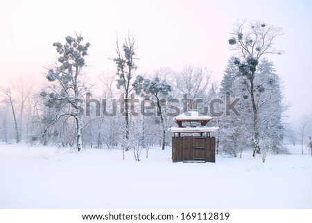 Oriental arbour covered in deep snow and tall trees with mistletoe - stock photo